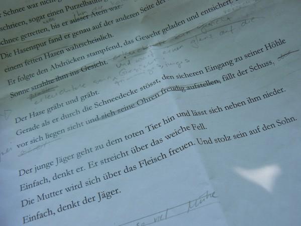 Manuskript - Foto: Susanne Krones